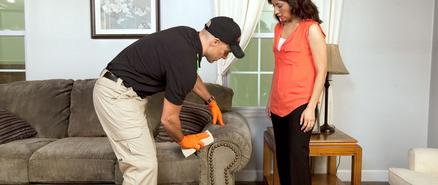 Stone Mountain, GA carpet upholstery cleaning